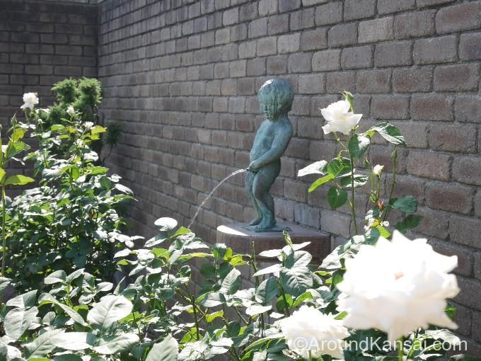 ベルギーのバラ「パスカリ」とかわいい小便小僧