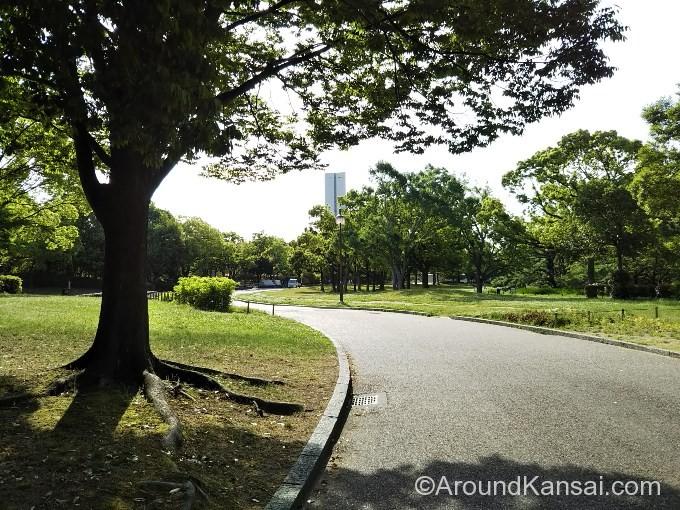 公園の中を道なりに歩きます